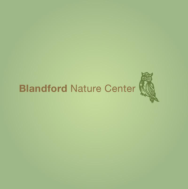 Blandford-6